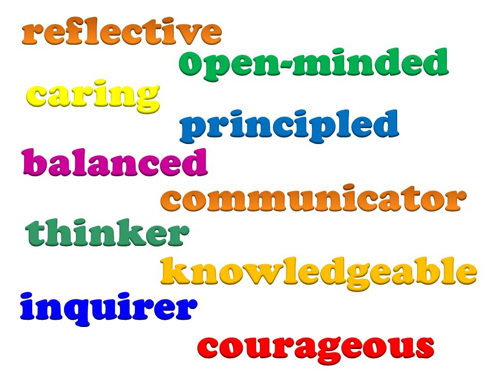 Image result for ib LEARNER PROFILE courageous